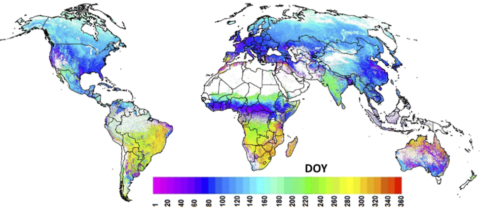 global phenology image